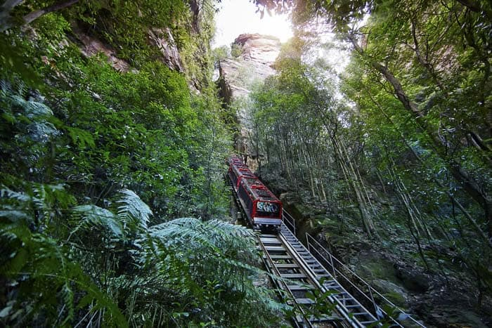 scenic world blue mountains steep train