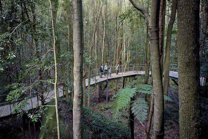boardwalk scenic world blue mountains rides