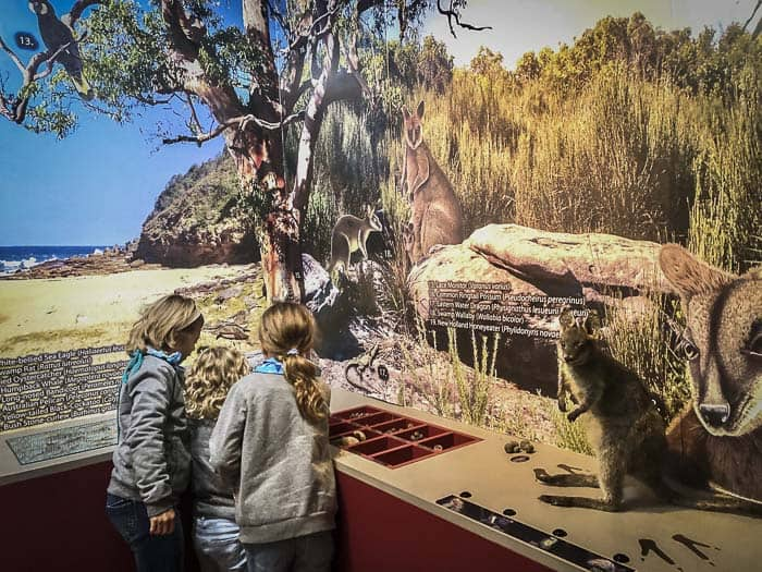 Bouddi National Park information centre with girls looking at exhibits