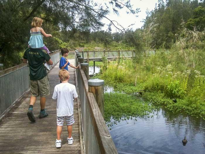ducks and boardwalk at Warriewood wetlands