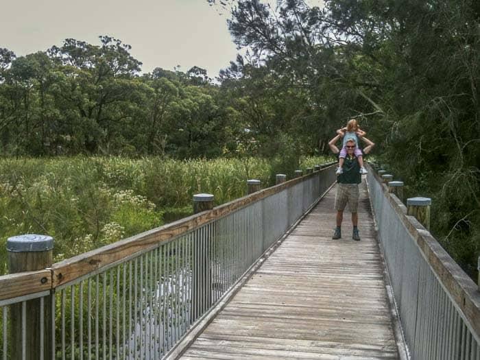 Warriewoord wetlands walk daughter on shoulders