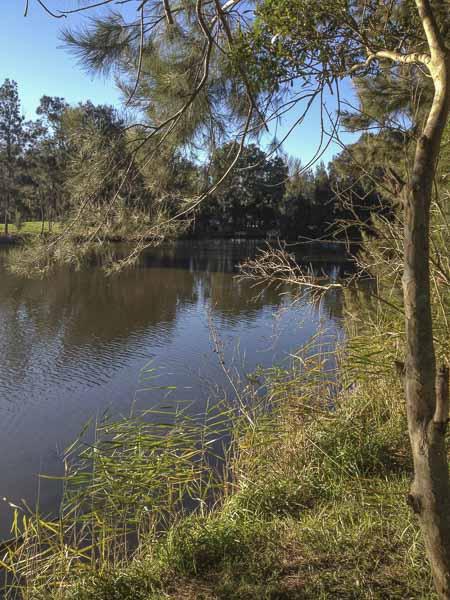 water danger at passmore reserve